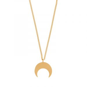Necklace horn gold